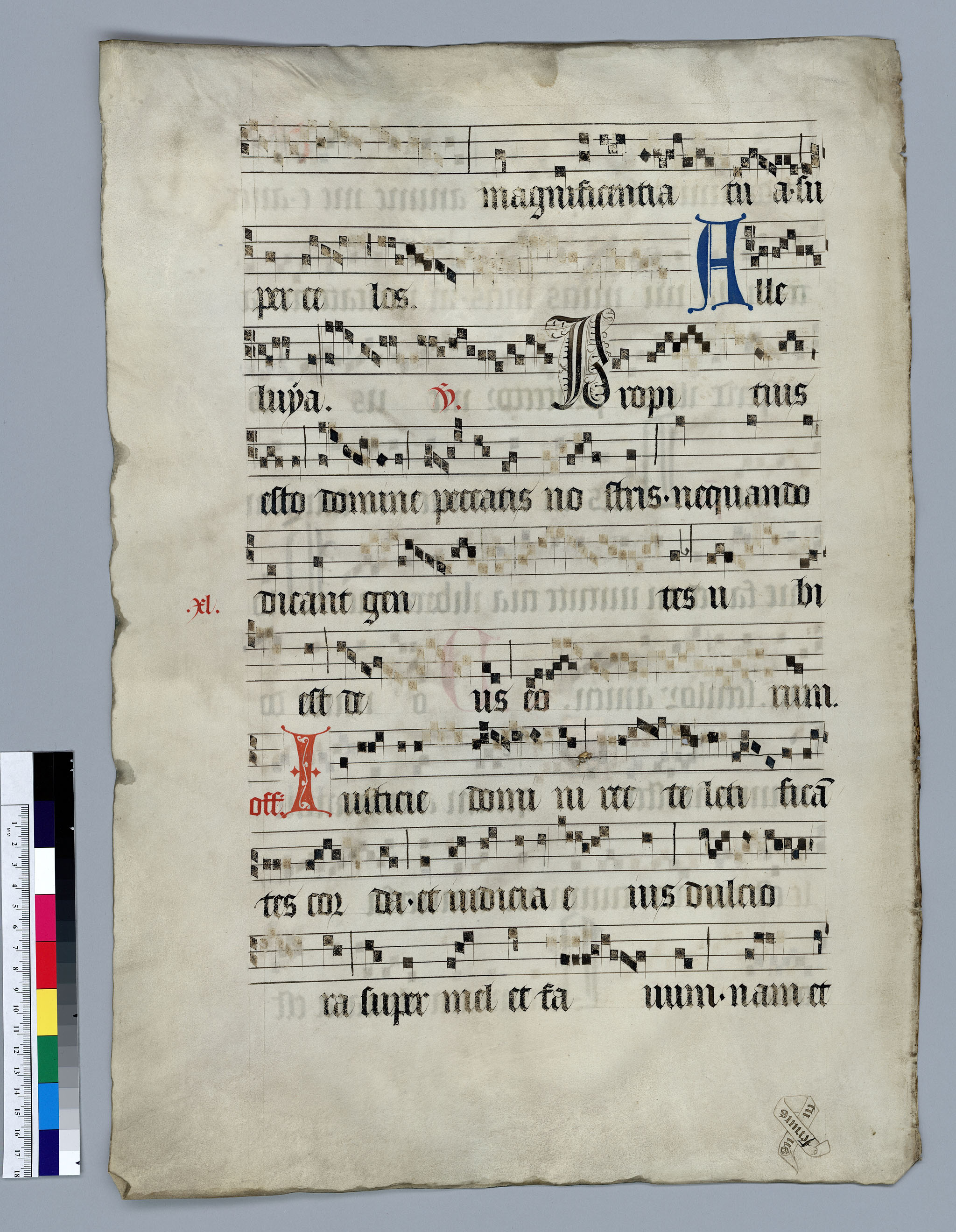 A Case Study of 15th-Century Gregorian Chant Leaves - D-Scholarship@Pitt