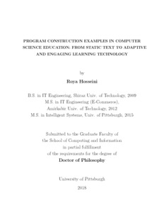 Program Construction Examples in Computer Science Education: From