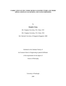 Thesis and dissertation zno